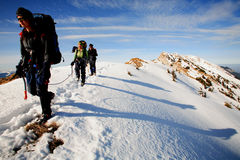 Trekkers alpinos Foto de Stock Royalty Free