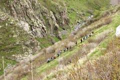 Trekkers Royalty Free Stock Photo