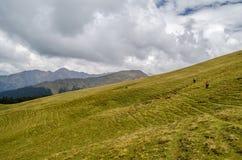 Trekkers, die Ali Bugyal - Roopkund-Wanderung kreuzen Stockbild