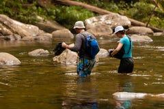 Trekkers dwarsrivier in Sinharaya-regenwoudpark, Sri Lanka Royalty-vrije Stock Afbeeldingen