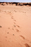 Trekkers foot prints Royalty Free Stock Photos