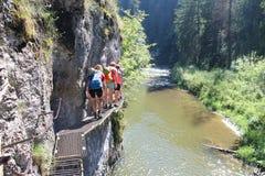 Trekkers on metal ladder in Canyon Prielom Hornadu in Slovenský raj Slovak Paradise National Park. Slovakia royalty free stock photos