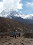 Trekkers na fuga de Everest, Himalaya, Nepal Foto de Stock