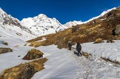 Trekkers nel santuario di Annapurna Fotografia Stock