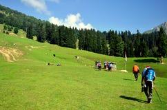 Trekkers nos grandes lagos, no Jammu & no Kashmir de Kashmir imagem de stock