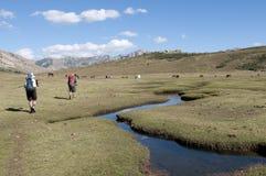 Trekkers op GR20 - Corsica Royalty-vrije Stock Afbeeldingen