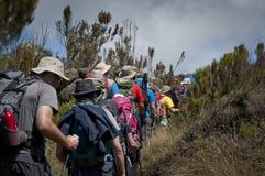 Trekkers passing through moorland on Kilimanjaro Stock Photography
