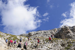 Trekkers to the refuge tower of pisa in the group latemar dolomites trentino Italy europe Royalty Free Stock Photo