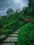 Trekkers are walking on the stone path between the shrubs royalty free stock images