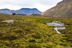 Trekking över Longyearbyen i arktisk region Royaltyfria Foton