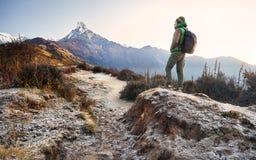 Trekking в горах Гималаев стоковые фото