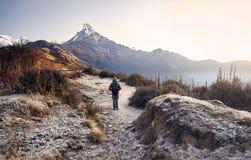 Trekking в горах Гималаев стоковое фото rf