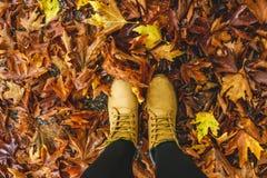 Trekking желтые ботинки на желтых листьях Стоковые Изображения RF
