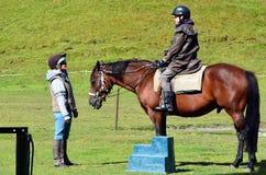 Trekking и верховая езда лошади стоковая фотография