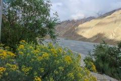 Trekking местность следа K2, ряд Karakoram, Пакистан, Азия стоковое фото rf