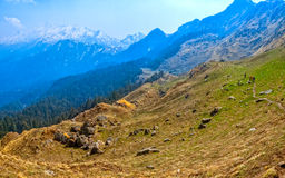 Trekking следы в Гималаях Стоковое фото RF