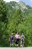 Trekking. A group on a trip in the mountains Royalty Free Stock Photography