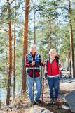 Trekking activity. Sporty seniors with rucksacks trekking in the forest on weekend Royalty Free Stock Photography