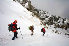 Trekking alpestre image stock
