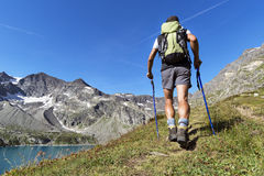 Trekking in the Alps. Man trekking in the Alps in a beautiful sunny day. Gran Paradiso National Park. Italy Stock Photography