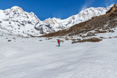 Trekking at Annapurna Basecamp stock photo