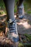 Trekking ao ar livre Imagens de Stock