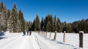 Trekking attraverso la neve fotografia stock libera da diritti