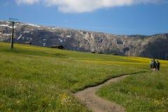 Trekking auf Dolomit Stockfotografie