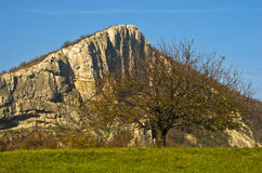 Trekking in autumn at meadow with big rock and old tree on a sunny autumn day Stock Photo