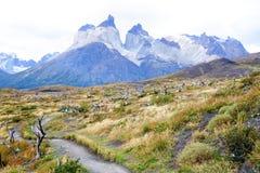 Trekking bana i Torres Del Paine National Park, Chile Arkivfoton