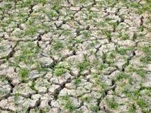 Trekking beïnvloed land zonder water Stock Fotografie