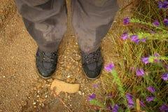 Trekking Boots Stock Photos