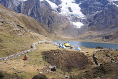 Trekking camp with pack mules and donkeys Royalty Free Stock Photography