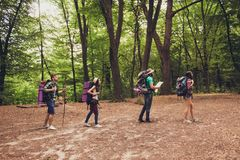 Trekking, camping and wild life concept. Side profile full lengs photo of four best friends, hiking in the woods near royalty free stock images