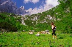 Trekking в Comelico Стоковая Фотография