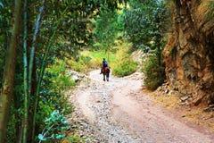 Trekking in Cordiliera Huayhuash Royalty Free Stock Image