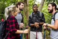 Trekking d'amis dans la forêt ensemble Photographie stock