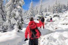 Trekking d'hiver en montagnes carpathiennes Photographie stock libre de droits