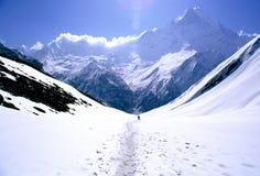 Trekking d'homme dans une vallée Photographie stock