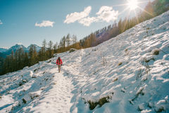 Trekking dans la neige Photo libre de droits