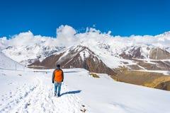 Trekking dans la région d'Annapurna, avec des sud d'Annapurna à l'arrière-plan, le Népal Images libres de droits