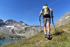 Trekking in de alpen Stock Fotografie
