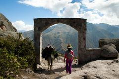 Trekking in de Andes royalty-vrije stock afbeeldingen