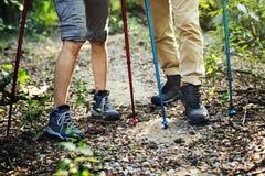 Trekking de couples ensemble dans la forêt Image stock