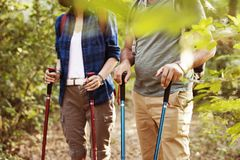 Trekking de couples ensemble dans la forêt Images libres de droits