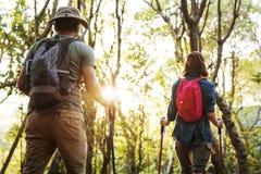 Trekking de couples ensemble dans une forêt Photographie stock