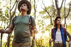 Trekking de couples ensemble dans une forêt Photos libres de droits