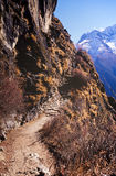 Trekking de l'Himalaya Photo stock