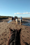 Trekking de poney sur une plage Image libre de droits