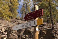 Trekking de randonneurs d'homme et de femme en montagnes d'été Image libre de droits